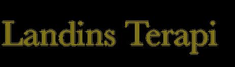 cropped-Landins-terapi-1.png